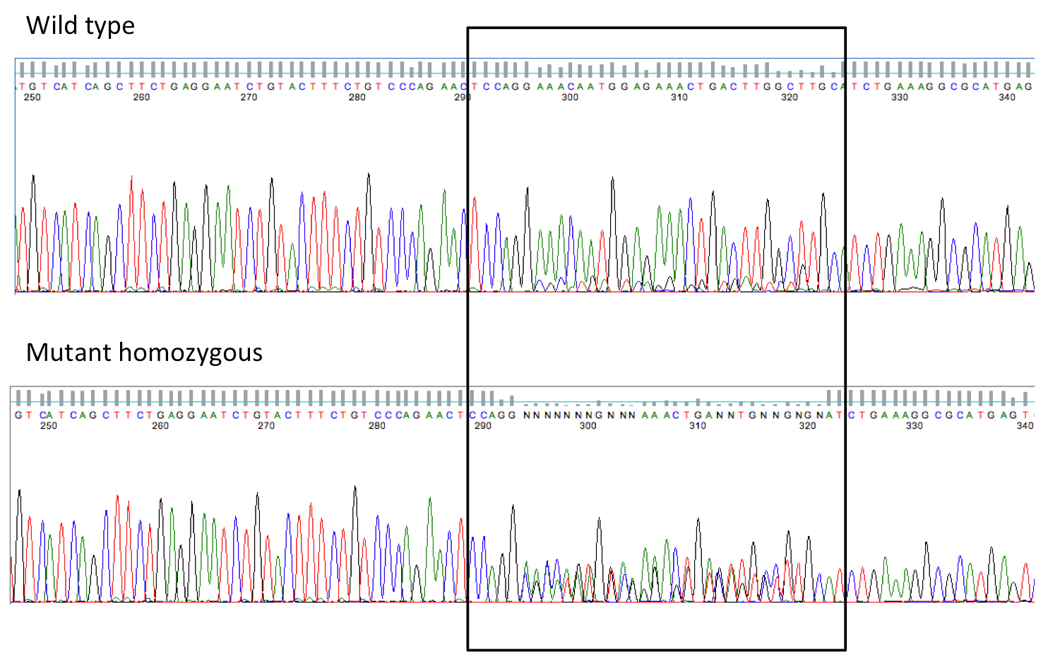 Archive ouverte HAL - A frameshift mutation in GON4L is associated ...